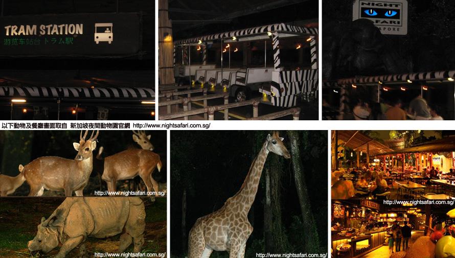 新加坡日/夜间动物园 singapore